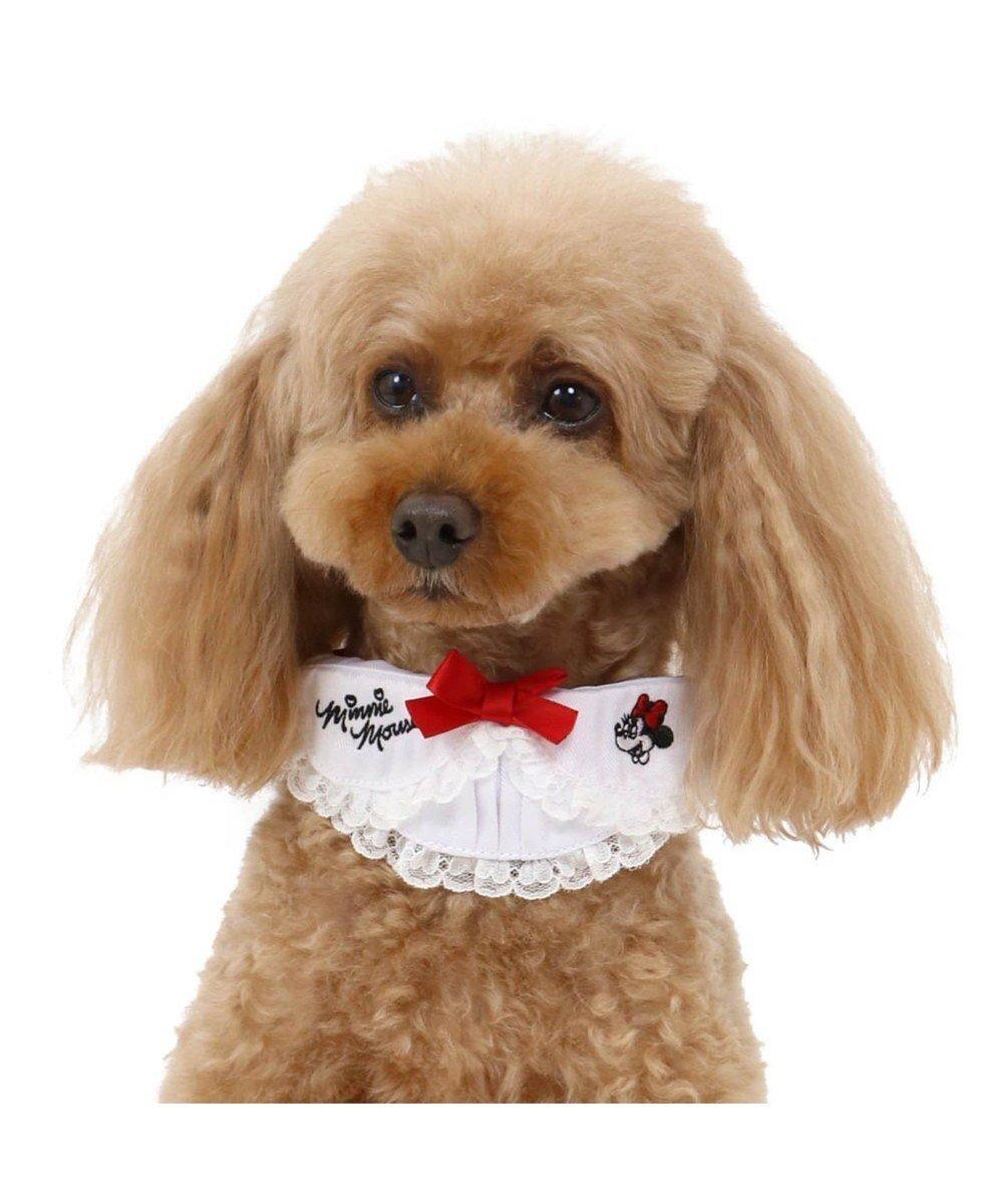 【ペットパラダイス/PET PARADISE / GOODS】のディズニー ミニーマウス 襟付 ドット首輪 ペット3S〔小型犬〕 人気、トレンドファッション・服の通販 founy(ファニー)  ドット 犬 Dog ホーム・キャンプ・アウトドア Home,Garden,Outdoor,Camping Gear ペットグッズ Pet Supplies  other-1|ID: prp329100001249997 ipo3291000000010105887